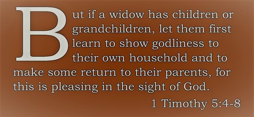 timothy verse